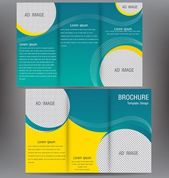 brochure business template design EPS 10 three vector image vector image