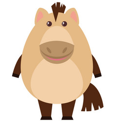 Happy horse on white background vector