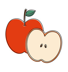 apple and half fruit natural food fresh vector image