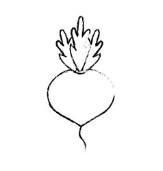 Figure delicious and health onion vegetable vector