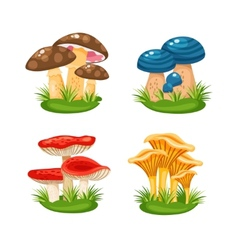 Mushrooms in grass vector