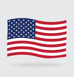 Usa waving flag isolated on background vector