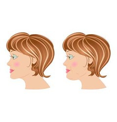 Fat and slim woman in profile vector