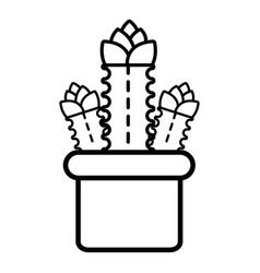 Three cactus icon outline line style vector
