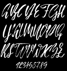 Hand drawn font modern dry brush lettering vector