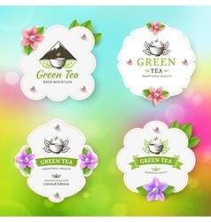 Green tea vector image vector image