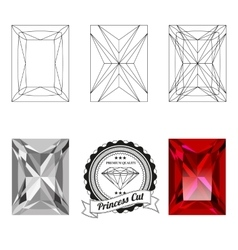 Set of princess cut jewel views vector