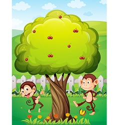 Two monkeys playing under the tree vector image