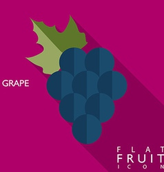 Grape flat icon with long shadow vector