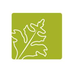 Label fresh vegetables plants healthy food vector