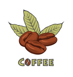 Coffee branch image vector