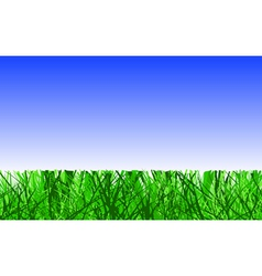 Mown lawn vector