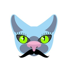 Blue cat with big mustache pet hipsters icon logo vector