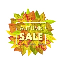 Autumn sale banner fall background foliage vector