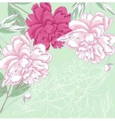 Background with white and pink peony vector