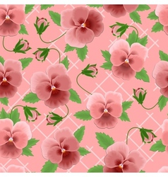 Pink pansies background vector image