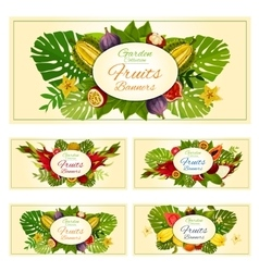 Exotic tropical fresh fruits banners set vector