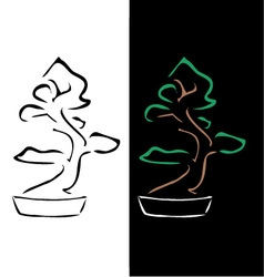 Logo for bonsai business vector image