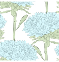 Seamless background with blue flowers aster vector