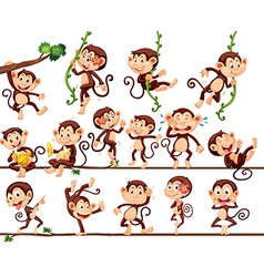 Monkeys doing different actions vector