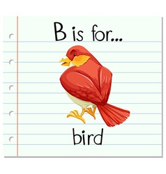 Flashcard letter B is for bird vector image
