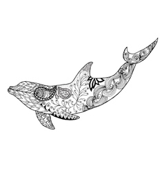 Cute dolphin adult antistress coloring page vector
