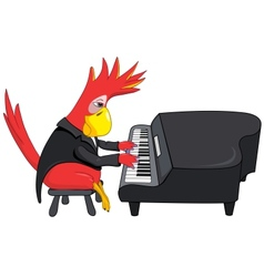 Funny Parrot Pianist vector image