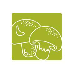 Label delicious fresh mushrooms organ food vector