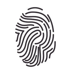 Fingerprint human identification vector