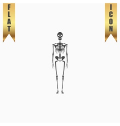Skeletons - human bones vector