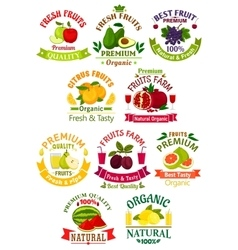 Fresh fruit juice icons signs badges set vector