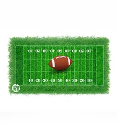 American football field with real grass textured vector