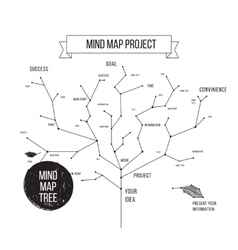 Constellations mindmap schemes infographic concept vector