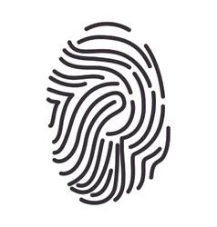 fingerprint human identification vector image