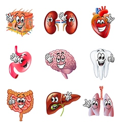 Funny cartoon human organs icons set vector image vector image
