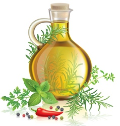 Olive oil with spices and herbs vector image