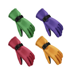 winter gloves set vector image vector image