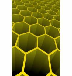 3D cells vector image