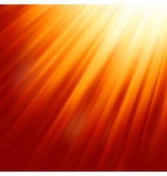 Warm sun light  vector