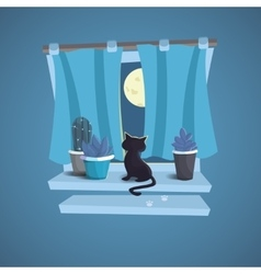 A cat sits on the windowsill night vector