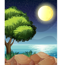 A bright moon and the beautiful nature vector