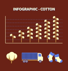 Cotton infographic vector