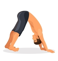 Isolated sporty boy doing downward facing dog pose vector