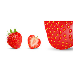 strawberry and half isolated on white vector image vector image