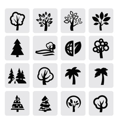 trees icon vector image