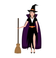 Beautiful witch costume with broomstick vector