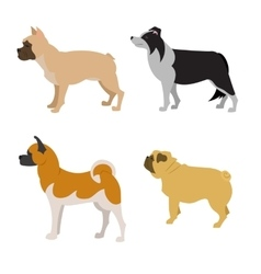 Collection of dogs vector