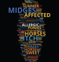 Midge bite misery text background word cloud vector