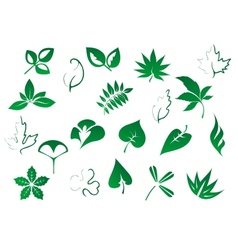 Green tree and plants leaves set vector