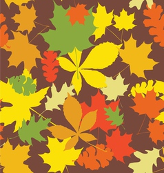 Seamless autumn leaves vector